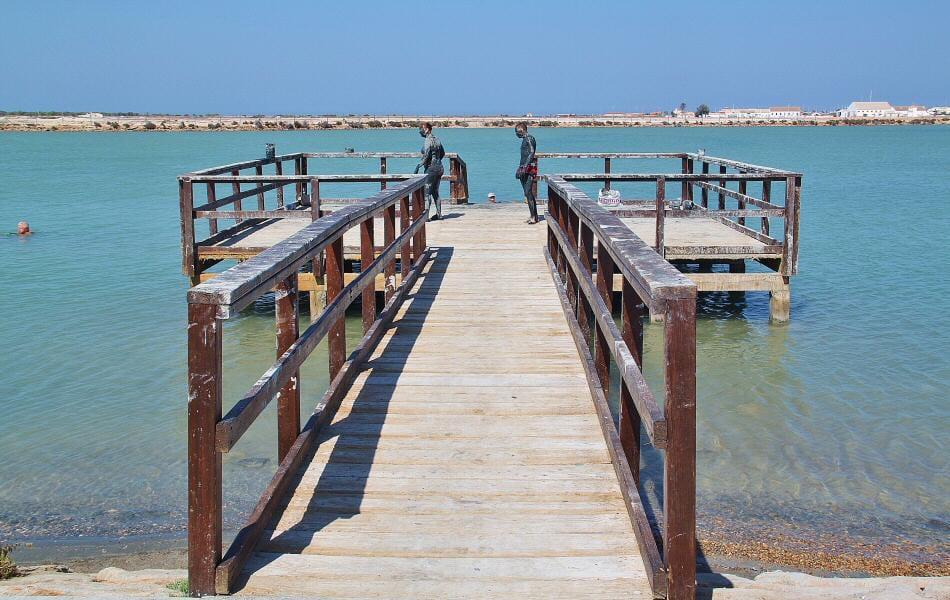 Los lodos del Mar Menor en San Pedro del Pinatar
