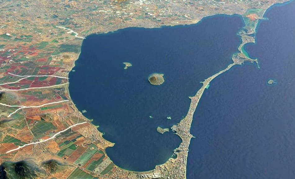 Fotografías sobre la fauna del Mar Menor para acercar a los visitantes la riqueza natural de la laguna salada de Murcia