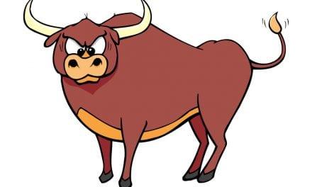 La vuelta de los toros a San Javier