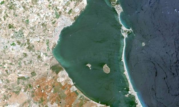 Turbidez, fango y algas. ¿Qué pasa en el Mar Menor?