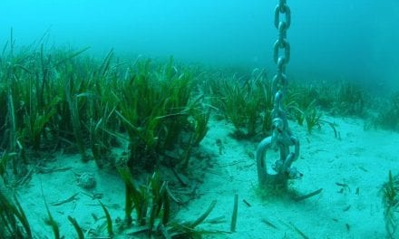 Cuatro puntos de acceso al Mar Menor para embarcaciones de recreo