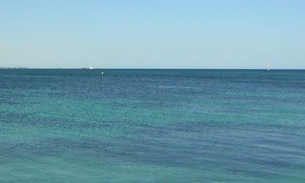 Organizaciones ecologistas proponen a los partidos 60 medidas para protección del Mar Menor