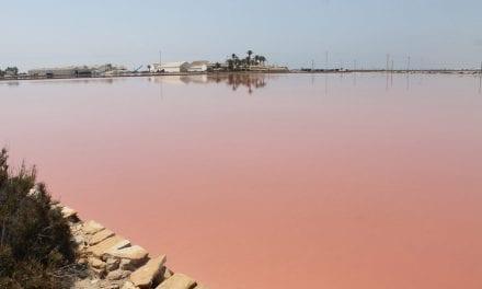Un acuerdo de custodia a largo plazo para la conservación de las salinas de San Pedro del Pinatar
