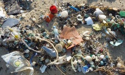 Limpieza en la costa de La Manga de plásticos, redes viejas y basuras