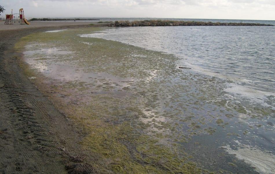 Las playas de Los Urrutias vuelven a llenarse de suciedad