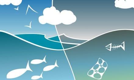 Aceleran la limpieza de las playas del Mar Menor para la Semana Santa 2019