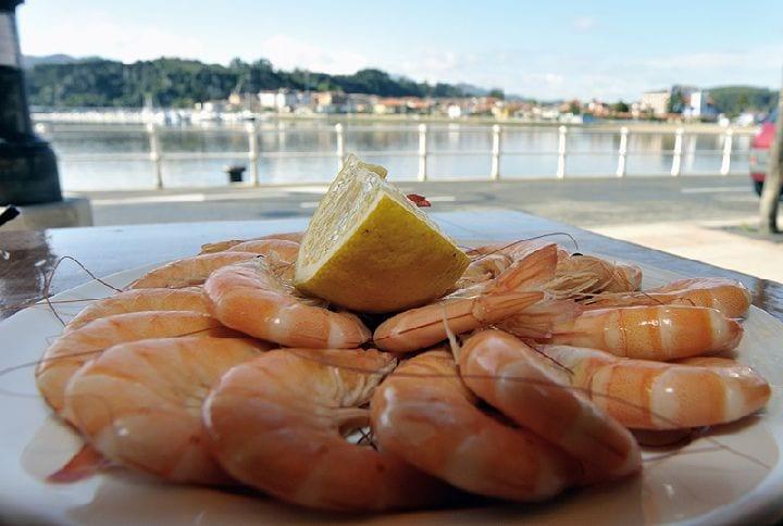 Arrancó la campaña del langostino del Mar Menor con240 kilos el primer día.