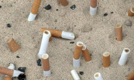 Las colillas de cigarrillo, un terrible contaminante en las playas de Mar Menor
