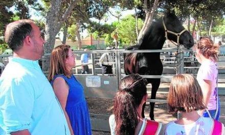 San Pedro del Pinatar ha celebrado su tradicional Feria del Ganado