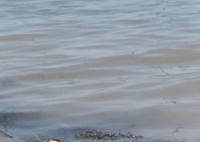Degradación y reducción de la zona de baño en Playa de Castillicos en Santiago de La Ribera 5