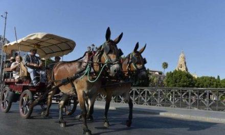 La salida de la XXII Ruta de la Huerta al Mar 2019 se retrasa por las altas temperaturas