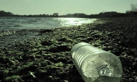 Recogida de residuos.¡Playas limpias, pijo!