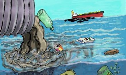 Arte efímero con residuos del Mar Menor