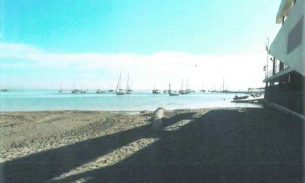 Costas da 15 días para terminar con 48 tuberías de vertidos urbanos al Mar Menor