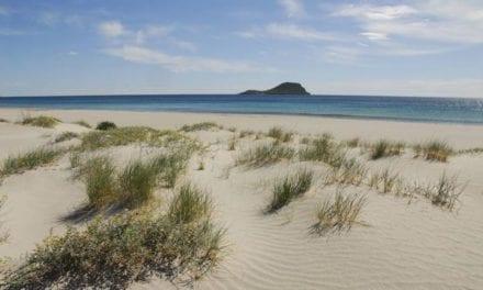Desaparición del 80% de la masa dunar en La Manga del Mar Menor