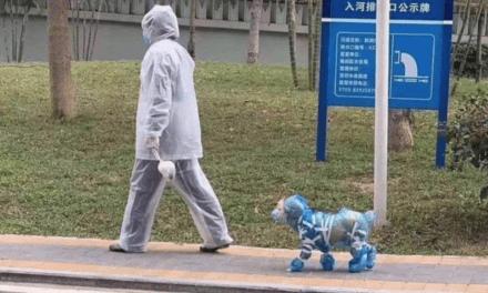 """Luchamos contra coronavirus con unas sonrisas entre tanta noticia negativa, fotos curiosas de """"inventos"""" chinos"""