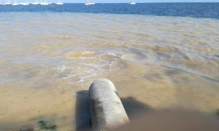 """Greenpeace se persona por los vertidos al Mar Menor en el """"caso Topillo"""""""