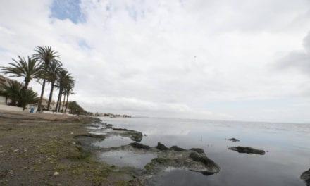 El Mar Menor esta teñido de un color negro en Los Urrutias por la descomposición de algas