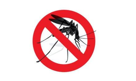 El ayuntamiento de los Alcázares vuelve a luchar contra el mosquito tigre
