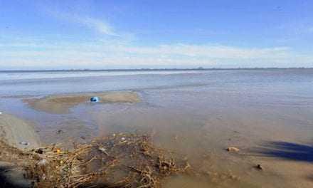 Se analizan las consecuencias de la gota fría sobre el Mar Menor con la colaboración de expertos de todo el país