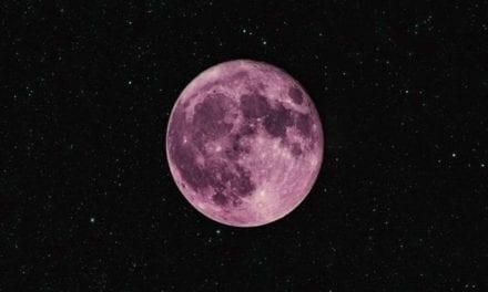 La luna rosa