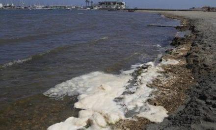 """La salinidad del Mar Menor está en niveles """"críticos"""""""
