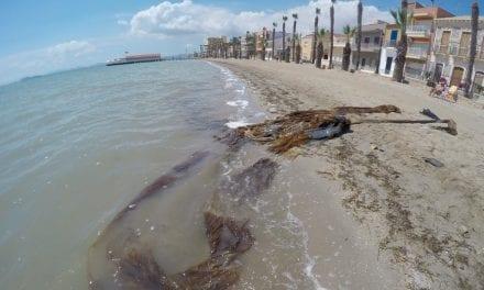 Brigadas de inspección de fondos submarinos limpiarán las playas Carrión y Manzanares en Los Alcázares