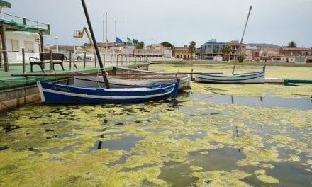 El Colegio de Ingenieros Agrónomos de la Región de Murcia delimitan las zonas del Mar Menor donde hay que actuar de urgencia