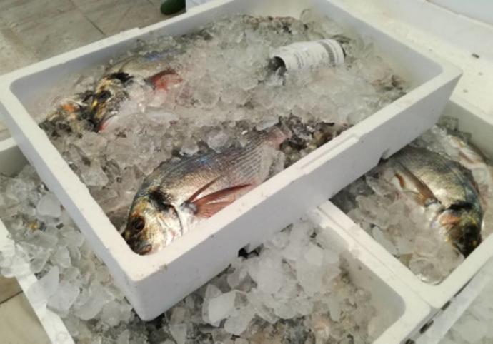 El pescado y marisco de la Región de Murcia, más barato que nunca