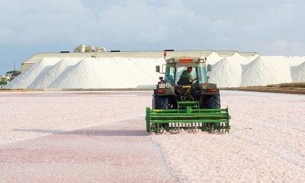 Agricultura valora la labor de las Salinas de San Pedro del Pinatar como garantía de sostenibilidad ambiental