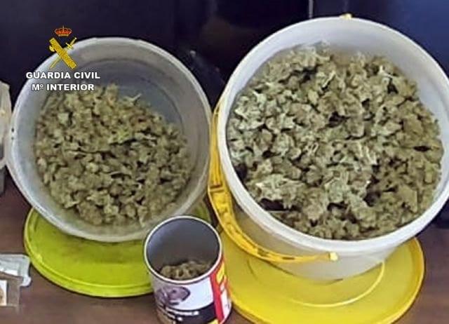 Nuevo golpe al cultivo ilícito de marihuana en la zona del Mar Menor